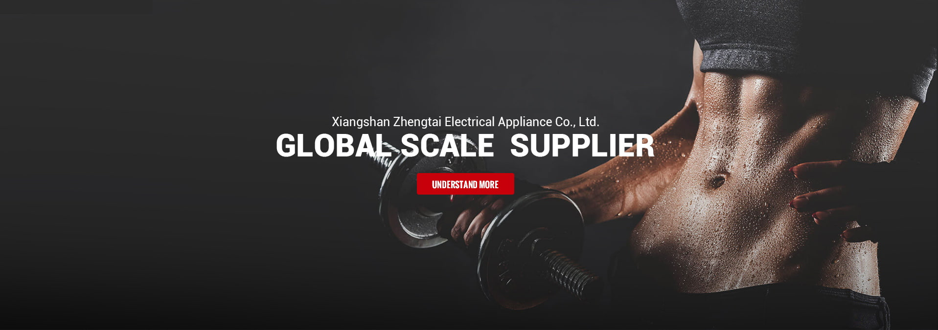 Gobal scale supplier