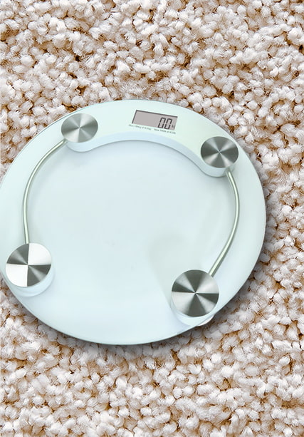 Electronic Body Fat Scale SYE-2002A1