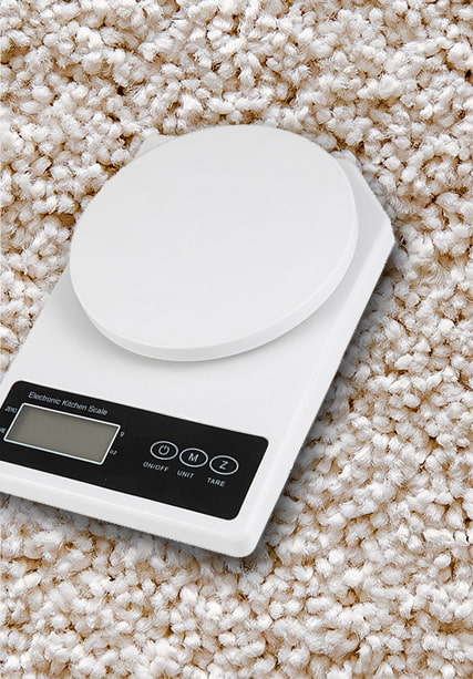 Electronic Kitchen Scale ZH9103